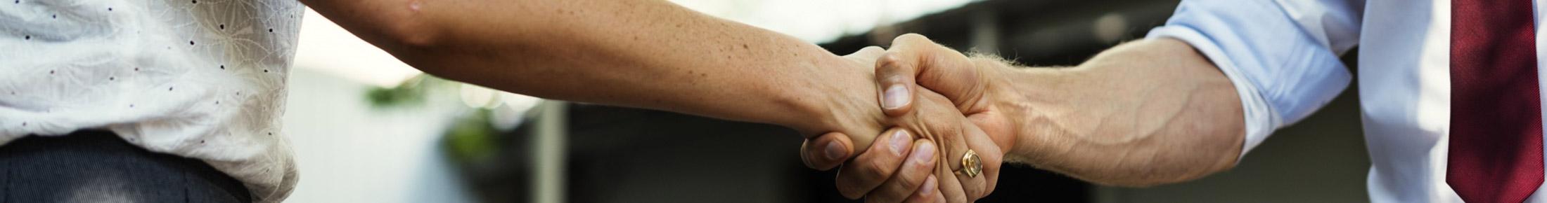 Danubia Wood Trading - Holzhandel mit Handschlagqualität